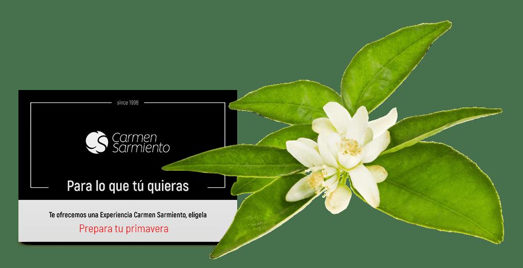 Centro de Medicina Estética Carmen Sarmiento. Belleza facial y corporal. Primer Centro Oficial Coolsculpting de Sevilla. EMSculpt. Exilis Elite Ultra Femme.